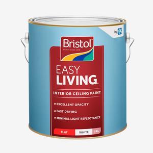 Easy Living Ceiling Paint