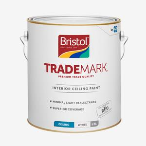 Trademark Ceiling Paint